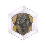 Leonberger - Face Suncatcher by Pet Prints EW187