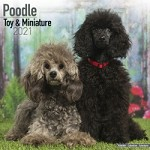 Poodle (Toy & Miniature) Wall Calendar 2021 by Avonside