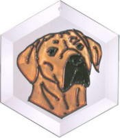 Rhodesian Ridgeback Suncatcher by Pet Prints EW295