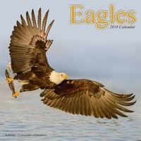 Eagles Wall Calendar 2018