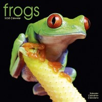 Frogs Wall Calendar 2018