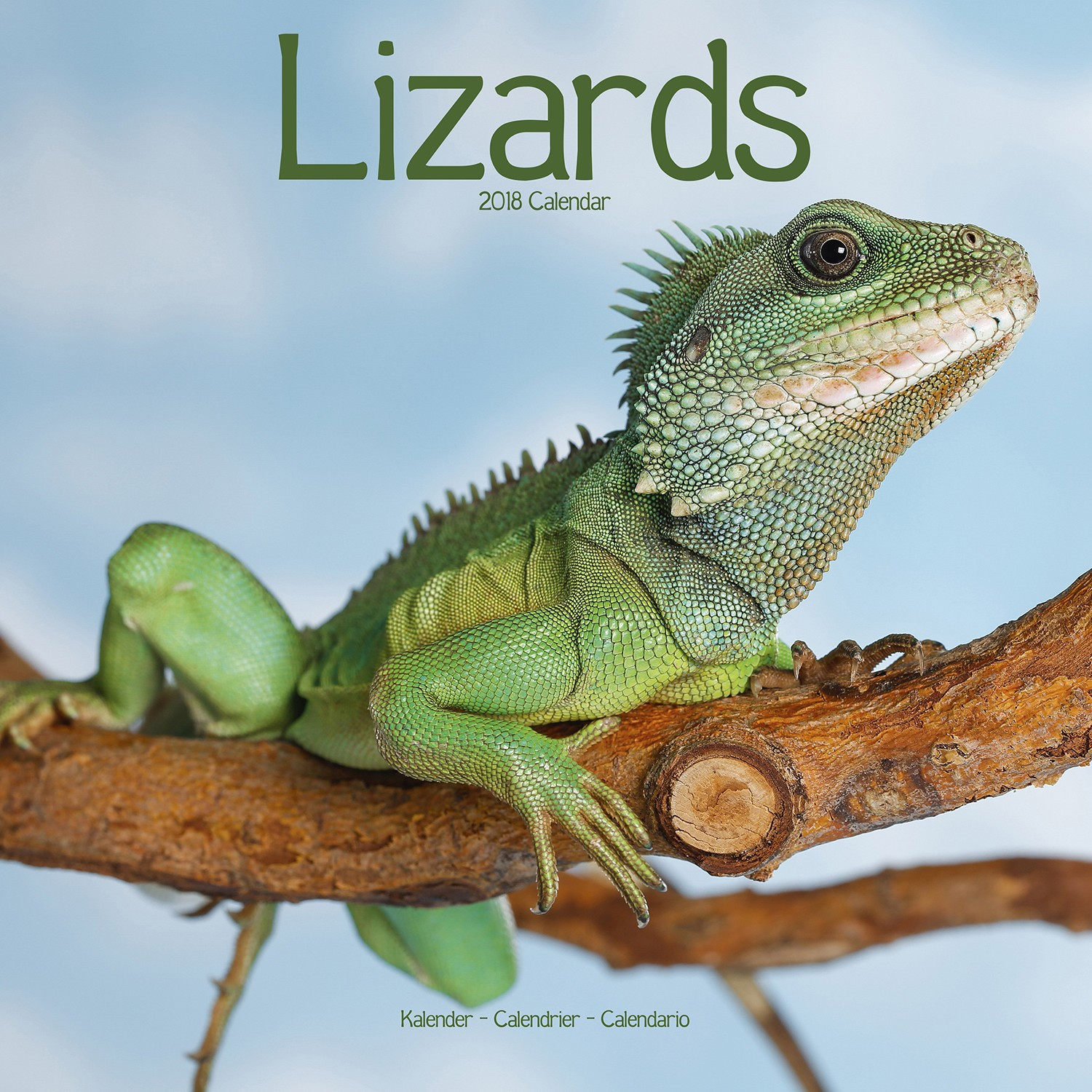 Lizards Wall Calendar 2018