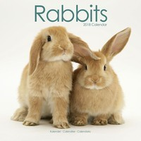 Rabbits Wall Calendar 2018