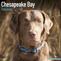 Chesapeake Bay Ret Wall Calendar 2018