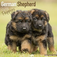 German Shepherd Puppies Wall Calendar 2018