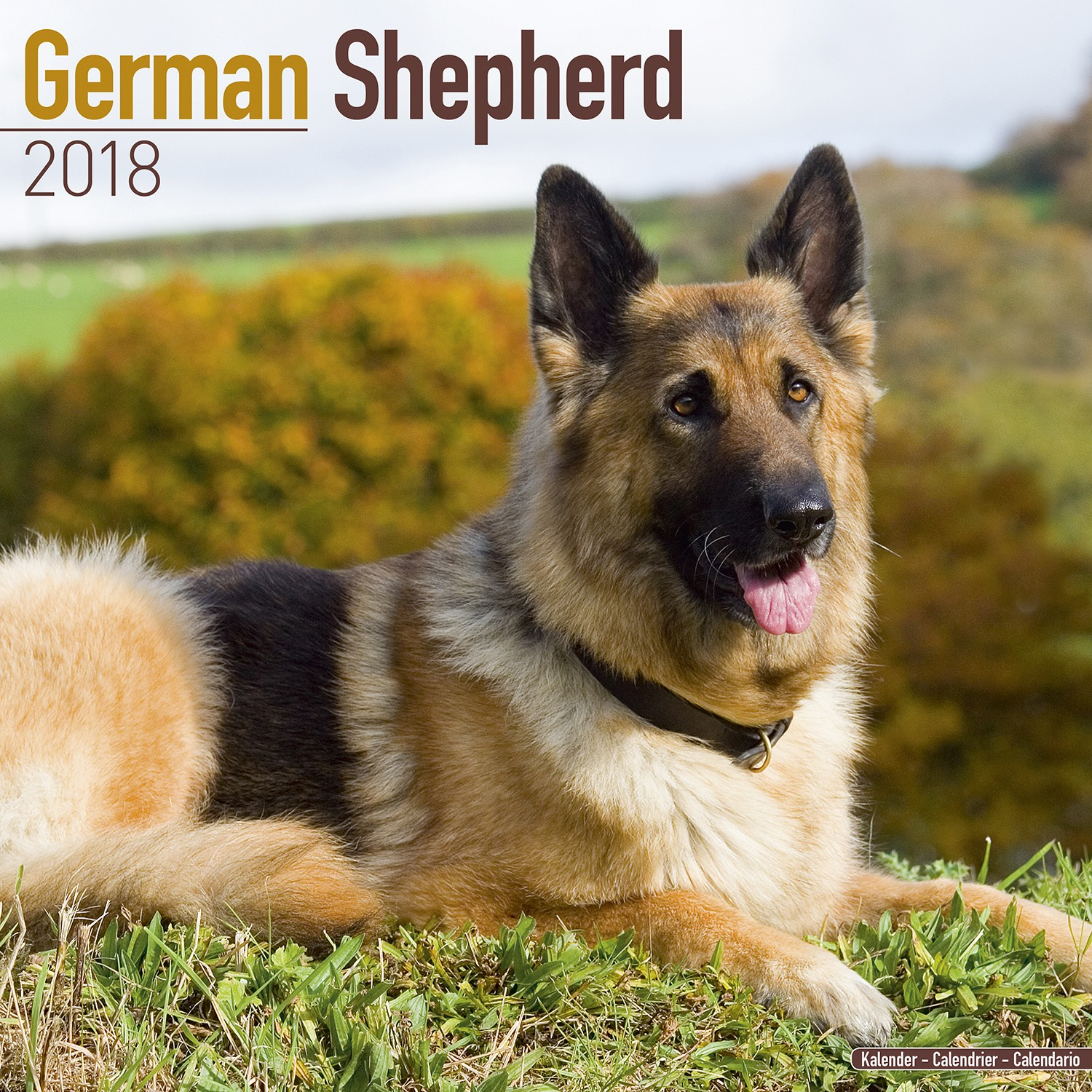 German Shepherd Wall Calendar 2018