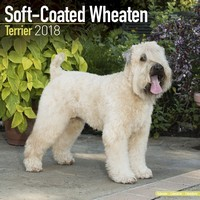 Softcoat Wheaten Terrier Wall Calendar 2018