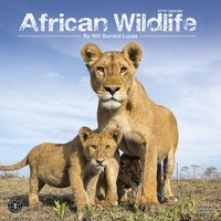 African Wildlife Wall Calendar 2019