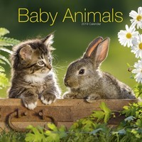 Baby Animals Wall Calendar 2019
