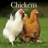 Chickens Wall Calendar 2019