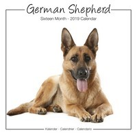 German Shepherds Studio Range Wall Calendar 2019