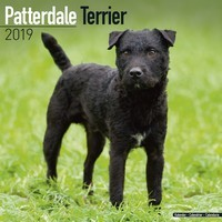 Patterdale Terrier Wall Calendar 2019
