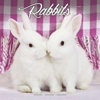 Rabbits Wall Calendar 2019