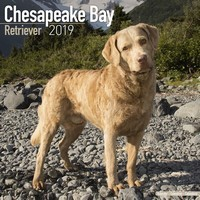 Chesapeake Bay Ret Wall Calendar 2019