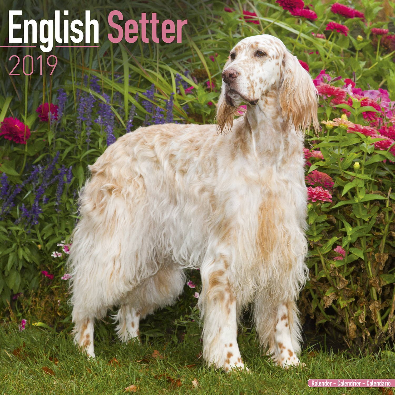 english setter calendar 2019 pet prints inc. Black Bedroom Furniture Sets. Home Design Ideas