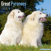 Great Pyrenees Wall Calendar 2019