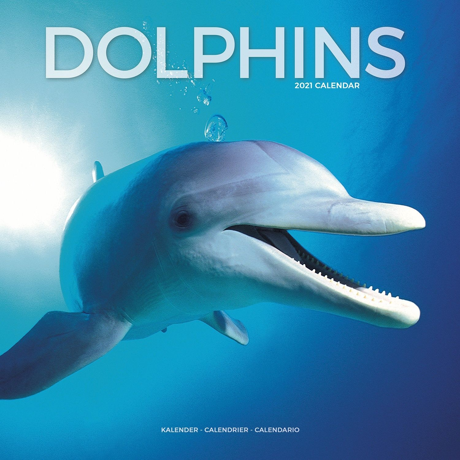 Dolphins Wall Calendar 2021 by Avonside