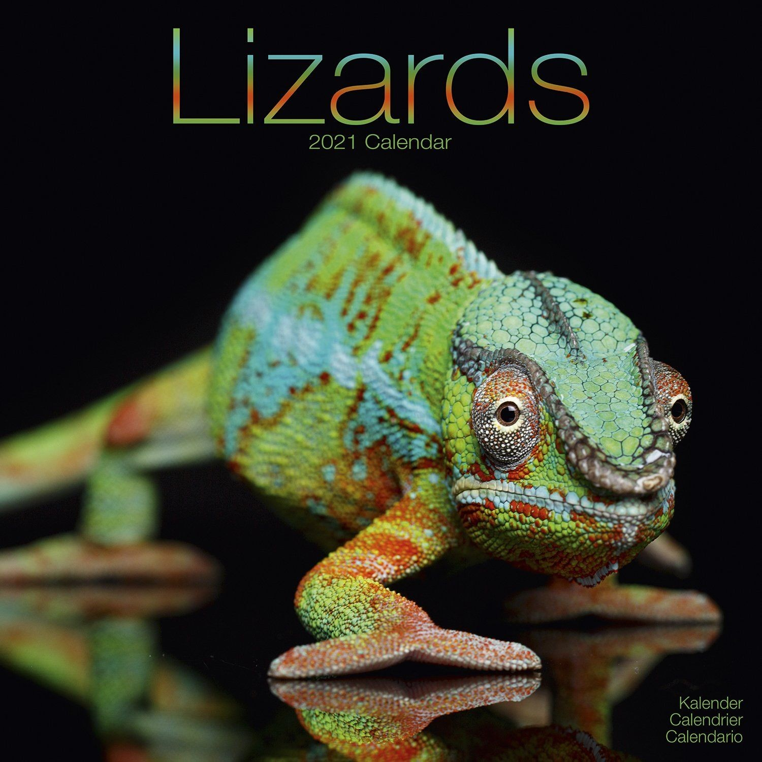 Lizards Wall Calendar 2021 by Avonside