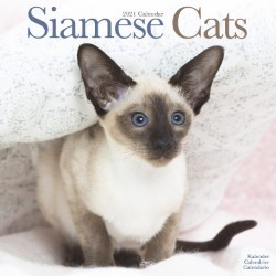 Cats - Siamese Wall Calendar 2021 by Avonside