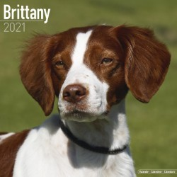 Brittany Wall Calendar 2021 by Avonside