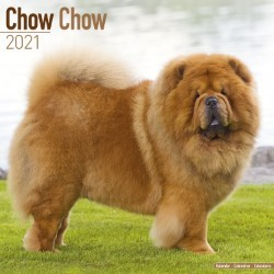 Chow Chow Wall Calendar 2021 by Avonside