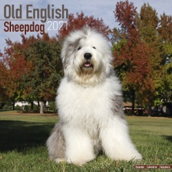 Old English Sheepdog Wall Calendar 2021 by Avonside