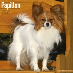 Papillon Wall Calendar 2021 by Avonside