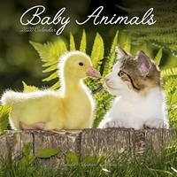 Baby Animals Wall Calendar 2020