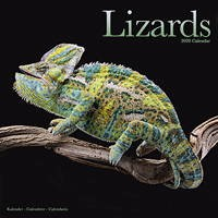 Lizards Wall Calendar 2020