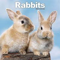 Rabbits Wall Calendar 2020