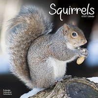 Squirrels Wall Calendar 2020