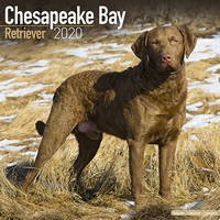 Chesapeake Bay Ret Wall Calendar 2020