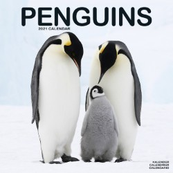 Penguins Wall Calendar 2021 by Avonside