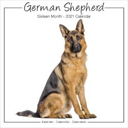 German Shepherds Studio Range Wall Calendar 2021 by Avonside