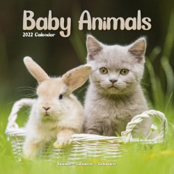 Baby Animals Wall Calendar 2022